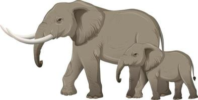 Adult elephant with young elephant in cartoon style on white background