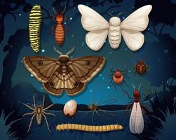 Set of different insects isolated vector