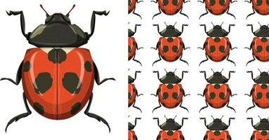 Beetle and seamless background vector