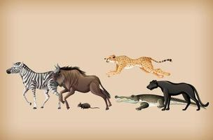 grupo de animales salvajes en el fondo vector
