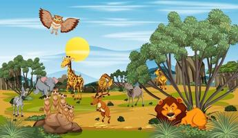 Many different animals in the forest scene vector