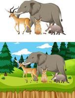 Grupo de animales salvajes africanos sobre fondo blanco. vector