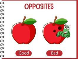 palabras opuestas con buenas y malas vector