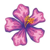 beautiful flower exotic tropical icon vector