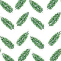 exotic leafs palms tropical pattern vector