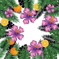 exotic leafs and flowers with oranges pattern vector