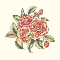 estampado floral de camelia vector