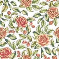 patrón floral transparente vector
