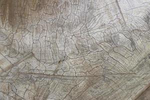 Cracked concrete texture