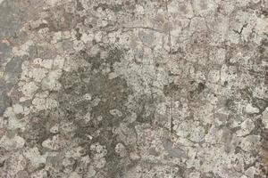 hormigón gris rústico