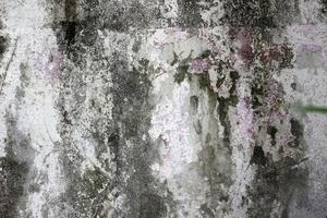 viejo muro de hormigón
