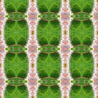 Abstract symmetrical green pattern