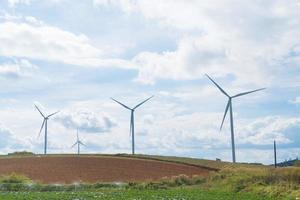 Wind turbines on the meadow