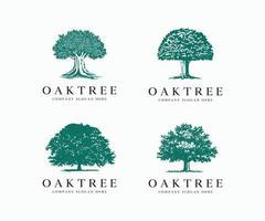 Oak Tree Silhouette Logo Icon Vector Illustration Template