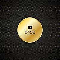 Abstract golden square lines grid with circles pattern on black background luxury style. vector