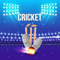 Cricket Match concept with background vector