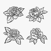 Set of rose illustration vector