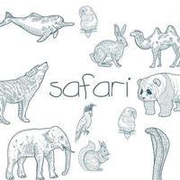 conjunto de animales de safari dibujados a mano vector