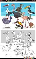 caricatura, divertido, aves, grupo, libro colorear, página vector