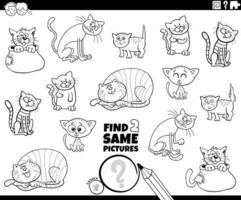 find two same cats or kittens game coloring book page vector