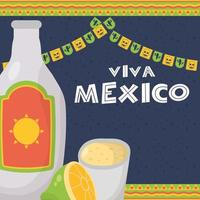 Viva Mexico celebration with tequila bottle vector