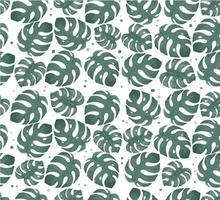 Watercolor monstera leaf seamless pattern background vector