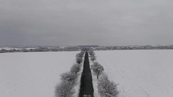 Aerial View of A Road in A Snowy Filed with Trees In 4K