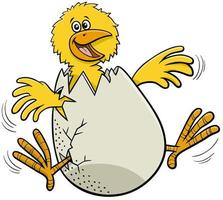 cartoon little chick hatching from egg vector