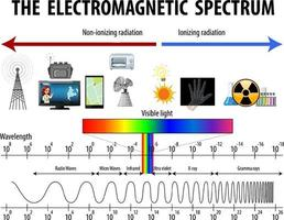 Science Electromagnetic Spectrum diagram vector