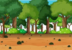 Blank nature forest landscape scene with many trees vector