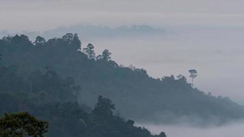 névoa matinal no mirante khao kho, chiang mai phetchabun
