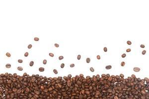 granos de café tostados en blanco