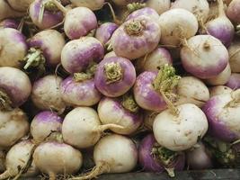 Harvest of turnips