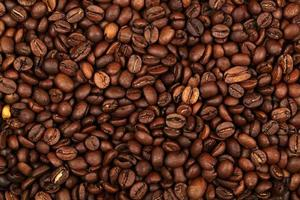 Coffee bean pile photo