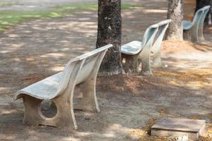 Benches under the tree