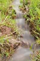 Stream in the grass