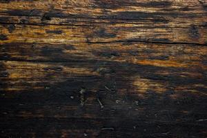 Close-up of charred or burned wood wall for texture or background photo