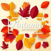 marco de otoño con fondo de diseño de hojas planas vector