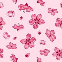 Sakura blossom flowers seamless pattern background vector