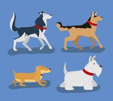 Set of domestic dogs vector