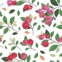 Seamless pattern with roses concept in the  white backdrop vector