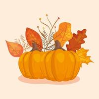 pumpkins with leafs of autumn vector