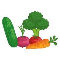 iconos de comida sana de verduras frescas vector