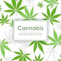 Cannabis plant background. vector