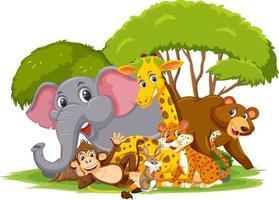 Personaje de dibujos animados de grupo de animales salvajes sobre fondo blanco vector