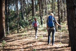 Portrait of hiking couple backpacking in a pine forest photo