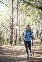 Women hiking with a backpack through a pine tree forest photo