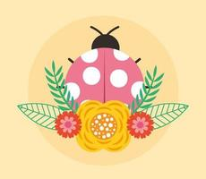 Hello spring poster with ladybug vector