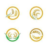 Wheat logo images set