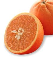 Sliced oranges on white